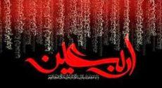 نرمافزار تلفن همراه «محله حسینی» تولید شد
