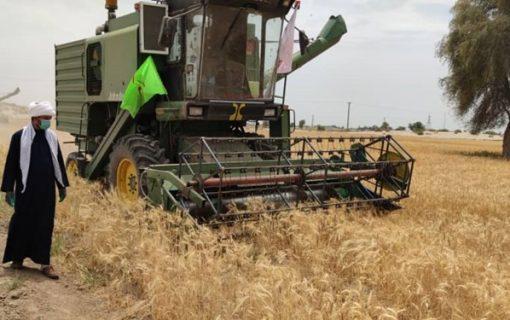 امام محله دهه هفتادی که هزار تن محصولات کشاورزی کرمانیها را نجات داد